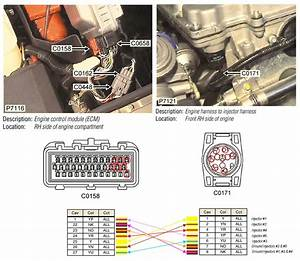 Pin Configuration Injector To Main Harness