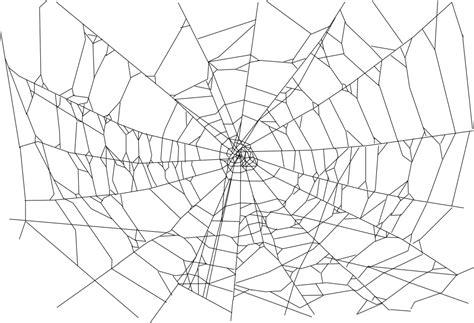 spider web png file   transparent png