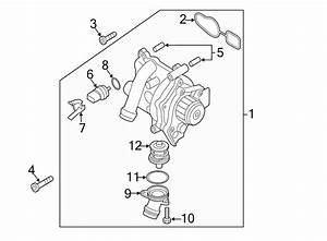 Volkswagen Eos Engine Coolant Thermostat  2009