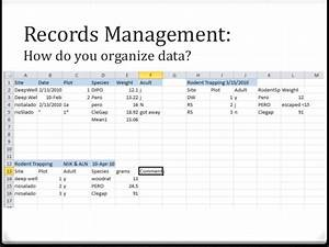 data management best practices training for librarians With documents management jobs