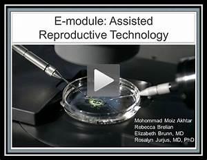 E-modules 8  Obstetrical Ultrasound - Integrated Curriculum  Anatomy Modules - Ob  Gyn