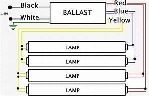 T8 Ballast Wiring Diagram Allwiringdiagram Ilsolitariothemovie It