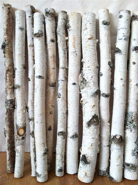 66 Best For The Love Of Birch Images On Pinterest Birch