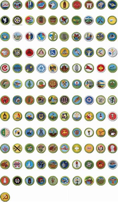 Merit Badge Scout Eagle Boy Badges Scouts