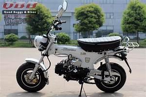 125ccm Pocket Bike : skyteam dax 125 st125 6 125ccm mini motorrad f r 2 ~ Jslefanu.com Haus und Dekorationen