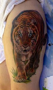 Tiger tattoo | Tatuagem masculina, Tatuagem feminina e ...