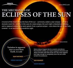 Solar Eclipses  An Observer U2019s Guide  Infographic