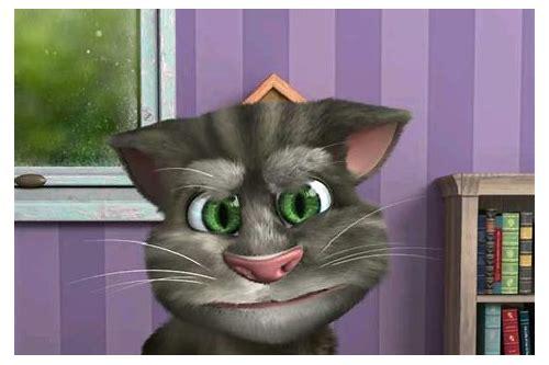 gato falante baixar de vídeo