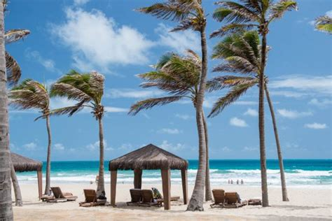 suites beach park resort updated  prices hotel