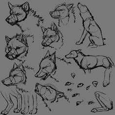 wolf images wolf animal drawings drawings