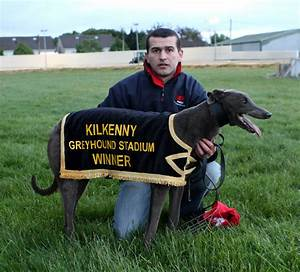 Kilkenny Dogs: Red Mills Champion Unraced - 2011.. as it ...