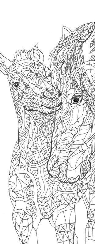 pin  coloring pages  adults  animal coloring pages