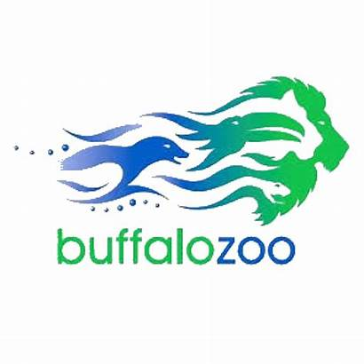 Buffalo Places Take Around Visit Website Shine