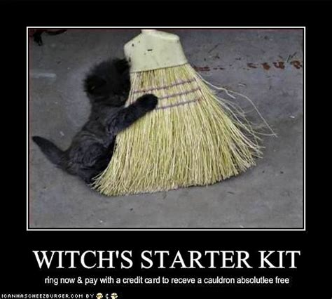 Witch Meme - 228 best witchy humor images on pinterest ha ha halloween cartoons and halloween humor