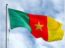 Graafix! Flag of Cameroon flag graphics