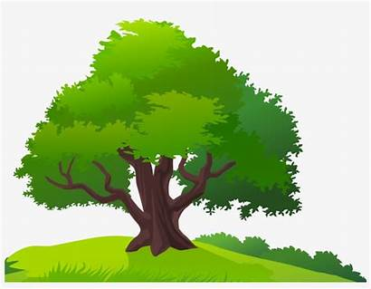 Tree Clipart Trees Landscape Grass Pngkey Take