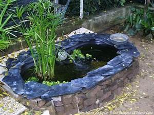Fontaine Pour Bassin A Poisson : le bassin de jardin poissons rouges ~ Voncanada.com Idées de Décoration