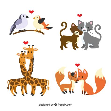 Explore our other popular graphic design and craft resources. Flat valentine's day animal couples collection   Free Vector
