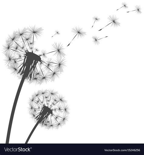 silhouette   dandelion royalty  vector image