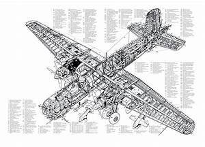 Heinkel He 177 Cutaway