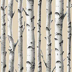 wallpaper bq   roll interior birch tree
