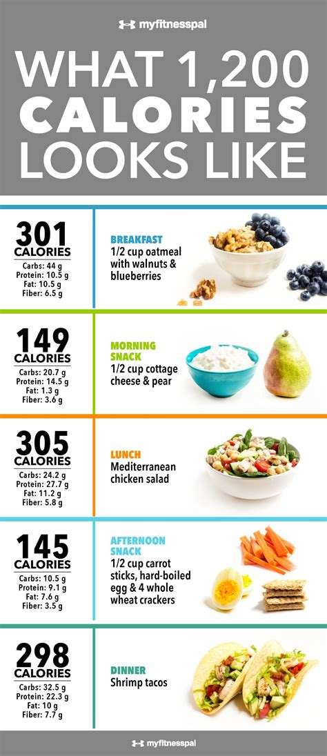 lose  pounds   months  realistic steps