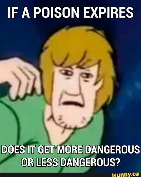 Shaggy Memes - shaggy meme pictures to pin on pinterest pinsdaddy