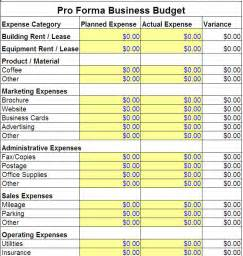 Pro Forma Profit And Loss Template Excel Pro Forma Business Budget Template Pro Forma Business Template