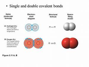 The Chemical Context of Life Atoms, Bonding, Molecules ...