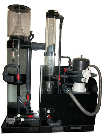 filtration junglekey fr image