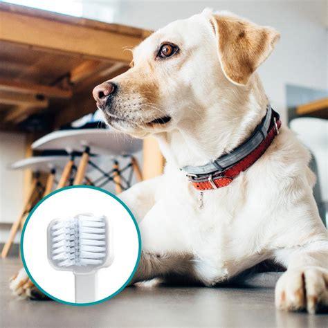 dog toothbrush  ultrasound mira pet techmira