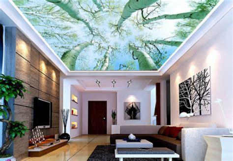 alternative  white ceiling  ceiling design ideas