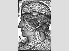 BibliOdyssey Brain Maps
