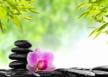 Zen Spa Relaxing Flower Stones Oriental Massage