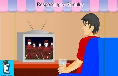 Responding To Stimuli   Scottmcadams.org