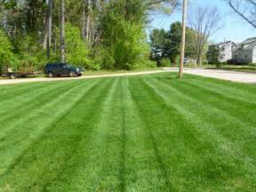Freshly Cut Grass Mowed Lawn