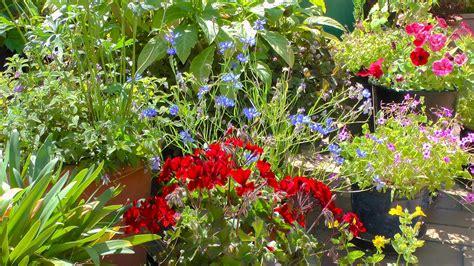 Sträucher Die Im Sommer Blühen by Was Bl 252 Ht Im Fr 252 Hjahr Gt Gt Gartennatur