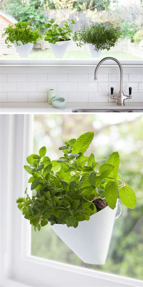 Indoor Window Garden by 53 Indoor Garden Idea Hang Your Plants From The Ceiling