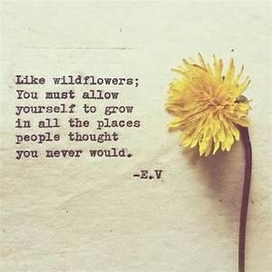 be a wild flower quote (NauticalWheeler) | Beautiful ...
