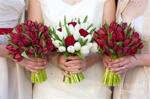 and white tulip and wedding bouquets photograph