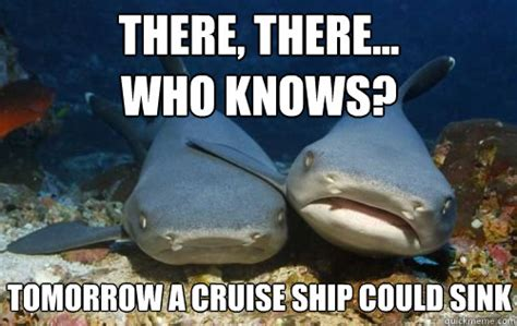 Cruise Meme - there there who knows tomorrow a cruise ship could sink compassionate shark friend