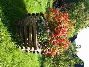 Kuebelpflanzen Winterhart Bluehend : gartenpflanzen balkon und kuebelpflanzen pflanzen umtopfen und pflegen ~ Whattoseeinmadrid.com Haus und Dekorationen