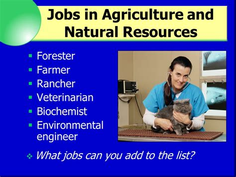 Lesson 8 Types Of Careers  Ppt Video Online Download. Top 20 Business Schools In Canada. Irs Tax Amnesty Program Movers Centreville Va. Lower Back Pain And Knee Pain. Mazda Dealers Cincinnati Micromash Cpa Review. How To Make Chicken Jerky For Dogs. Maid Service Chapel Hill Nc F To Sma Adapter. Wellness Recovery Center Elephants At The Zoo. 2 Gig Usb Flash Drive Bulk Windows Secure Ftp