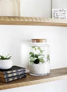 Pot De Chambre Gifi : les 25 meilleures id es concernant plantes aquatiques sur ~ Dailycaller-alerts.com Idées de Décoration