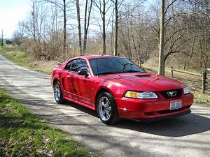 Lwschrock 2000 Ford Mustang Specs, Photos, Modification Info at CarDomain
