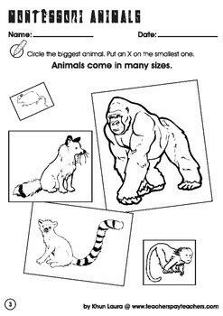 zoology worksheets kidz activities