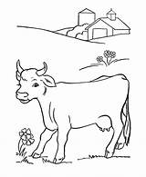 Cow Coloring Pages Cute Printable Cows Colouring Farm Activity Dairy Animal sketch template