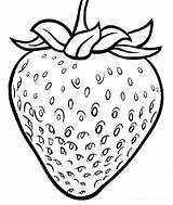 Strawberry Coloring Pages Printable Plant Fruit Strawberries Fruits Drawing Chosen Illustrations Cartoon Coloringpagesfortoddlers Sheets Gambar Getcolorings Disimpan Dari sketch template