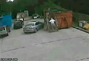 Idiot Wtf GIF by Cheezburger - Find & Share on GIPHY