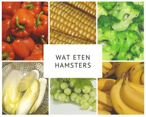 veel fruit eten slecht